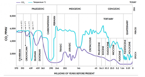 Global Temperature and Atmospheric CO2 Concentration over the Past 600 Million Years